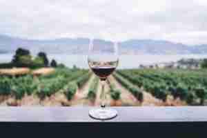 Mornington Peninsula Gourmet Food and Wine Tour